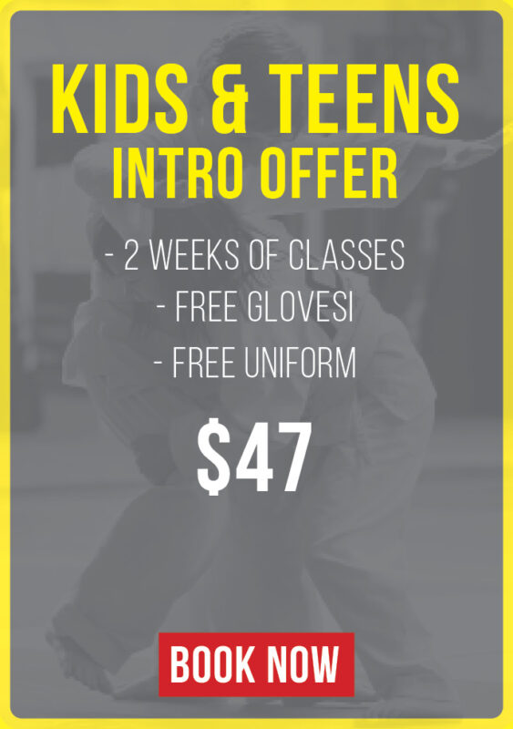 kids and teen intro offer
